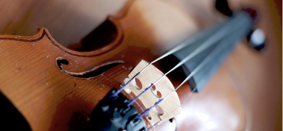 Violin - www.jpeg